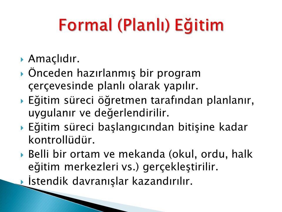 Formal (Planlı) Eğitim