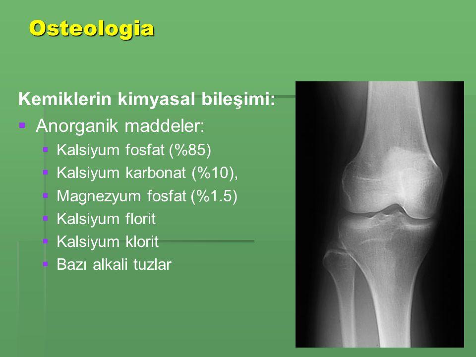 Osteologia Kemiklerin kimyasal bileşimi: Anorganik maddeler: