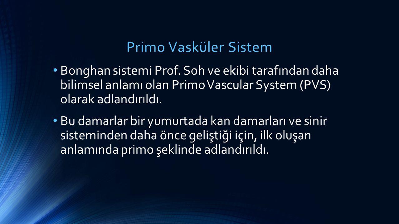 Primo Vasküler Sistem Bonghan sistemi Prof. Soh ve ekibi tarafından daha bilimsel anlamı olan Primo Vascular System (PVS) olarak adlandırıldı.