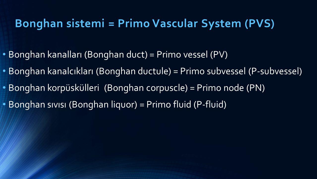 Bonghan sistemi = Primo Vascular System (PVS)