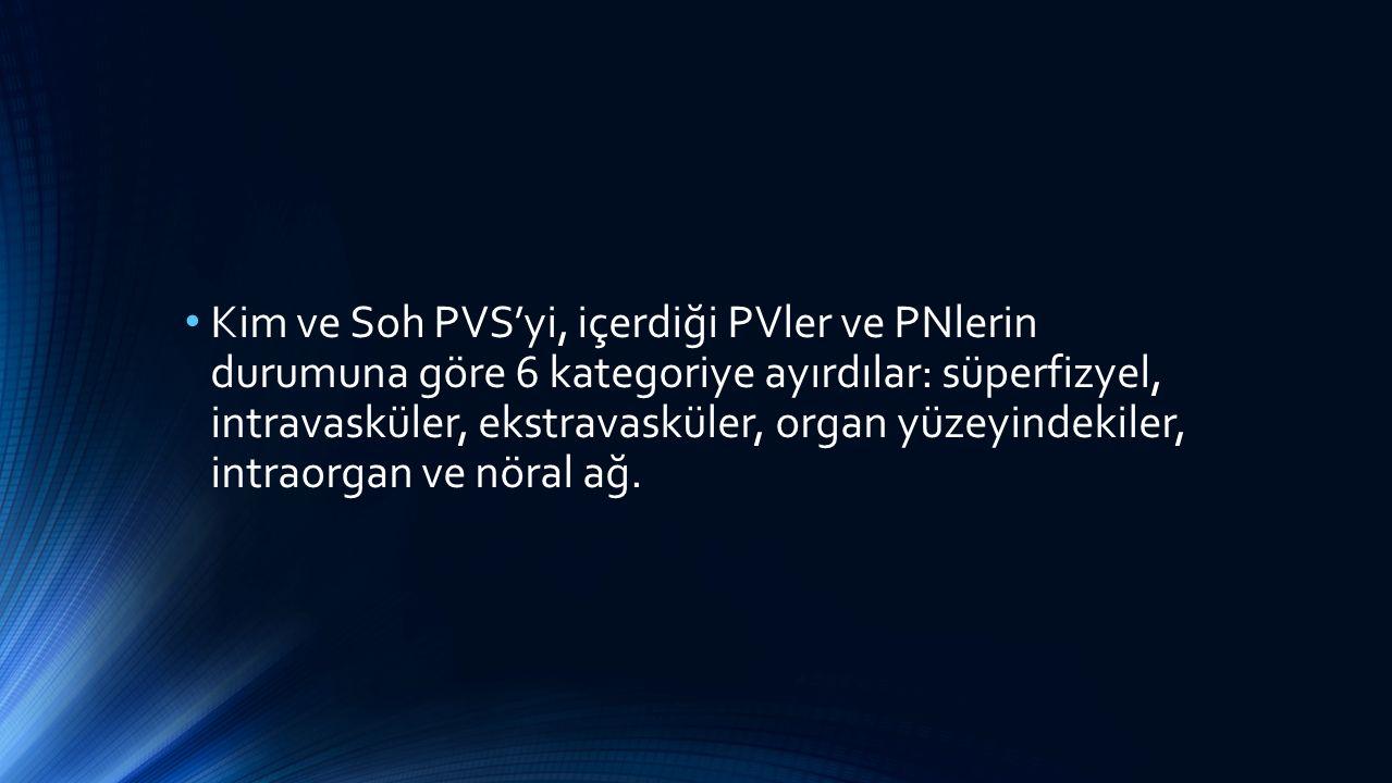 Kim ve Soh PVS'yi, içerdiği PVler ve PNlerin durumuna göre 6 kategoriye ayırdılar: süperfizyel, intravasküler, ekstravasküler, organ yüzeyindekiler, intraorgan ve nöral ağ.