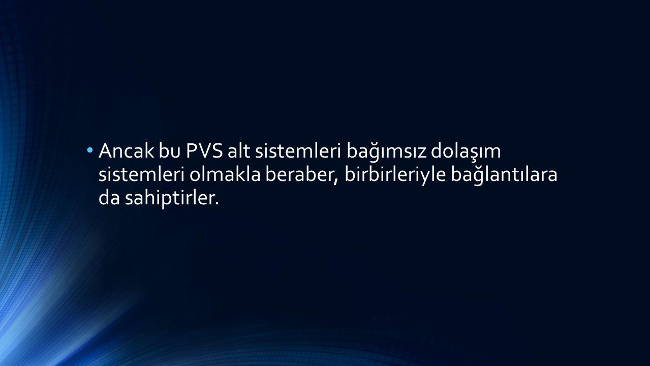 Ancak bu PVS alt sistemleri bağımsız dolaşım sistemleri olmakla beraber, birbirleriyle bağlantılara da sahiptirler.