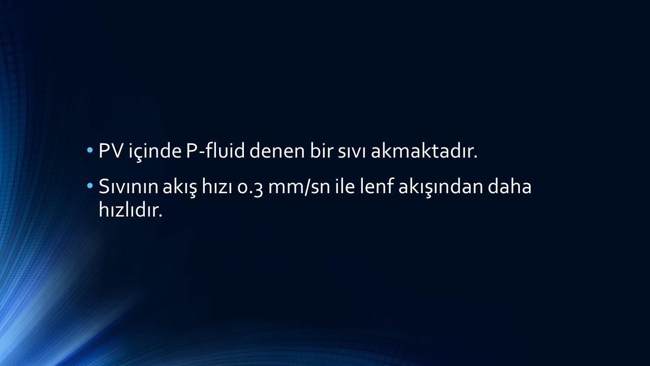PV içinde P-fluid denen bir sıvı akmaktadır.