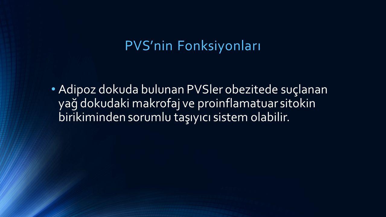 PVS'nin Fonksiyonları