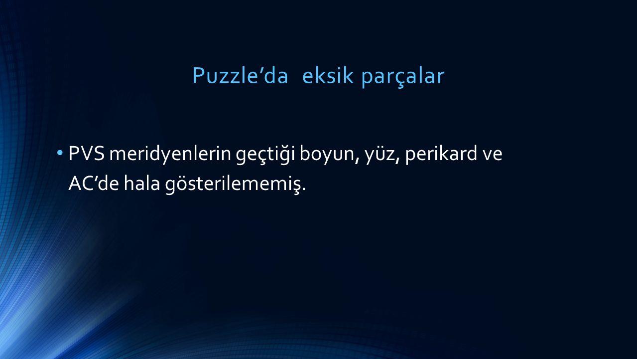 Puzzle'da eksik parçalar