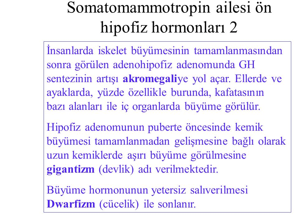Somatomammotropin ailesi ön hipofiz hormonları 2
