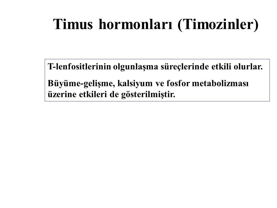 Timus hormonları (Timozinler)