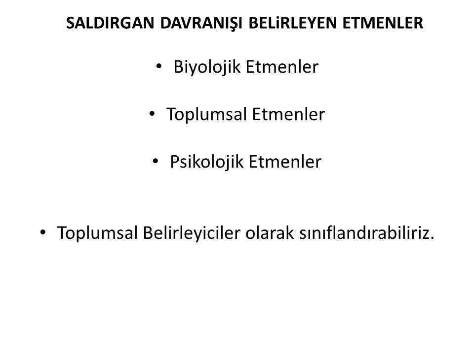 SALDIRGAN DAVRANIŞI BELiRLEYEN ETMENLER