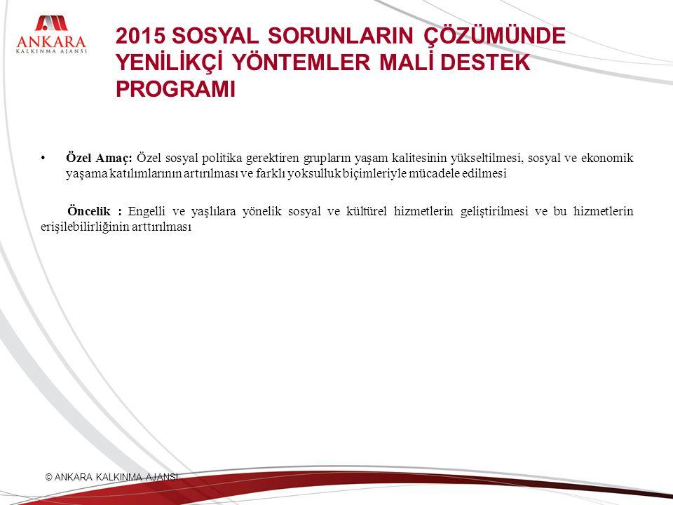2015 SOSYAL SORUNLARIN ÇÖZÜMÜNDE YENİLİKÇİ YÖNTEMLER MALİ DESTEK PROGRAMI