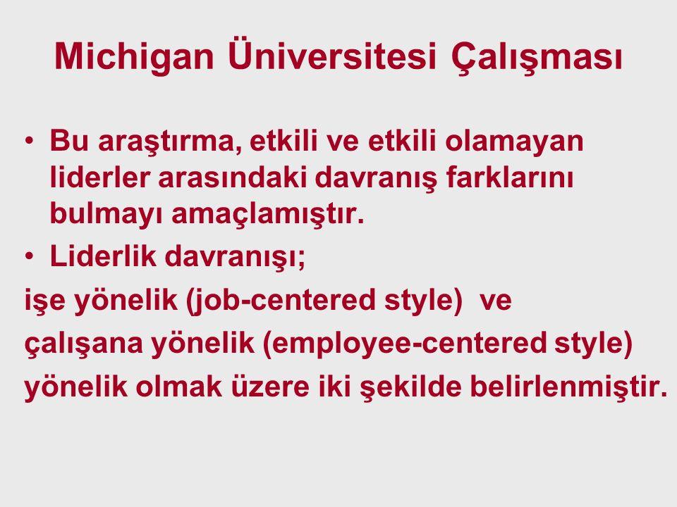 Michigan Üniversitesi Çalışması