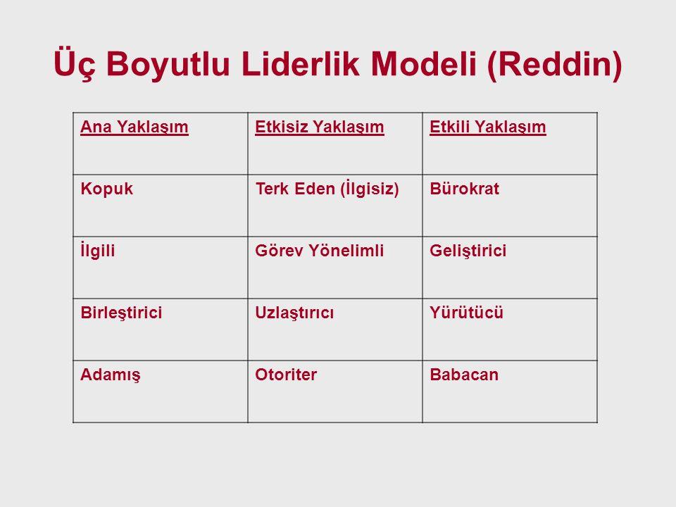 Üç Boyutlu Liderlik Modeli (Reddin)