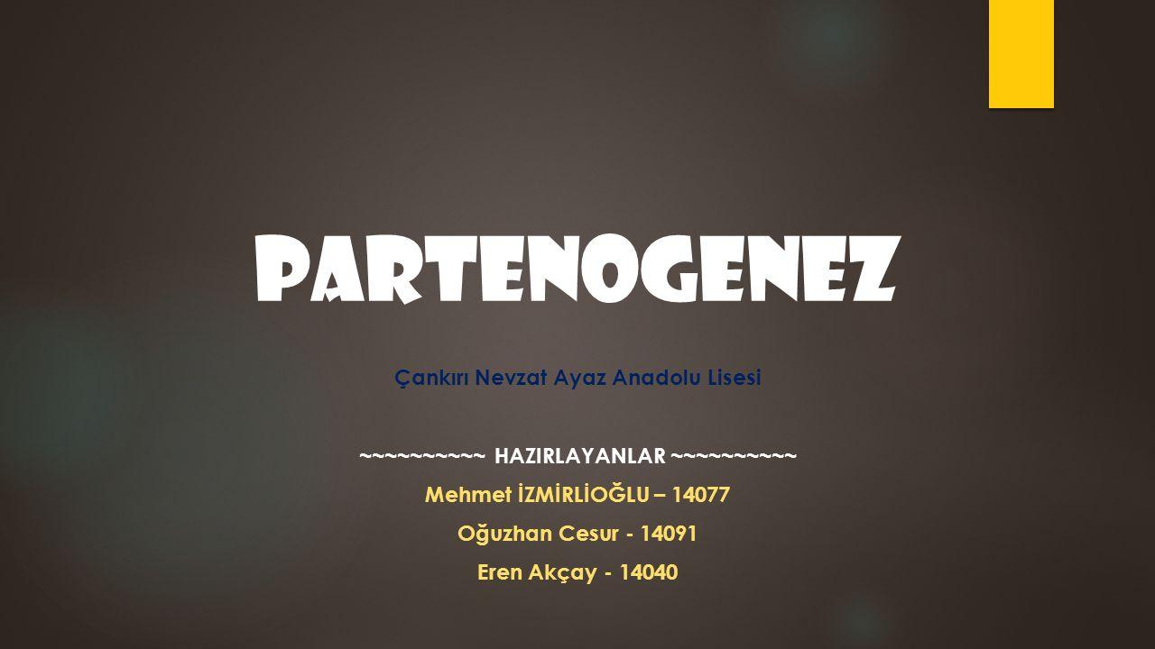 Çankırı Nevzat Ayaz Anadolu Lisesi ~~~~~~~~~~ HAZIRLAYANLAR ~~~~~~~~~~