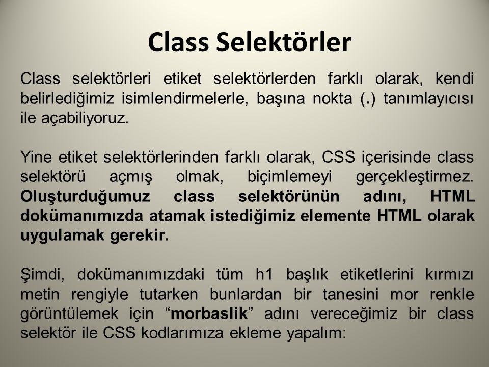 Class Selektörler