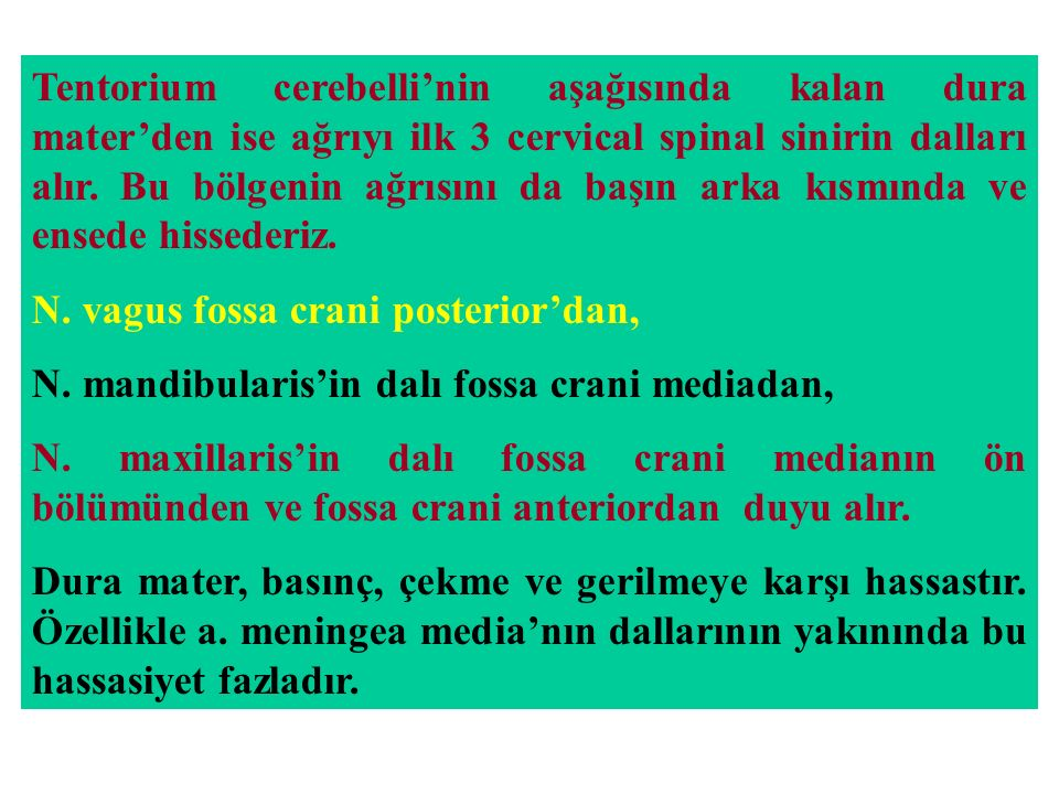 Tentorium cerebelli'nin aşağısında kalan dura mater'den ise ağrıyı ilk 3 cervical spinal sinirin dalları alır. Bu bölgenin ağrısını da başın arka kısmında ve ensede hissederiz.