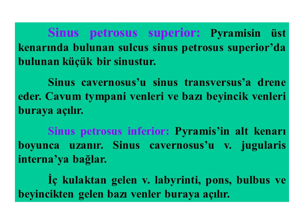 Sinus petrosus superior: Pyramisin üst kenarında bulunan sulcus sinus petrosus superior'da bulunan küçük bir sinustur.