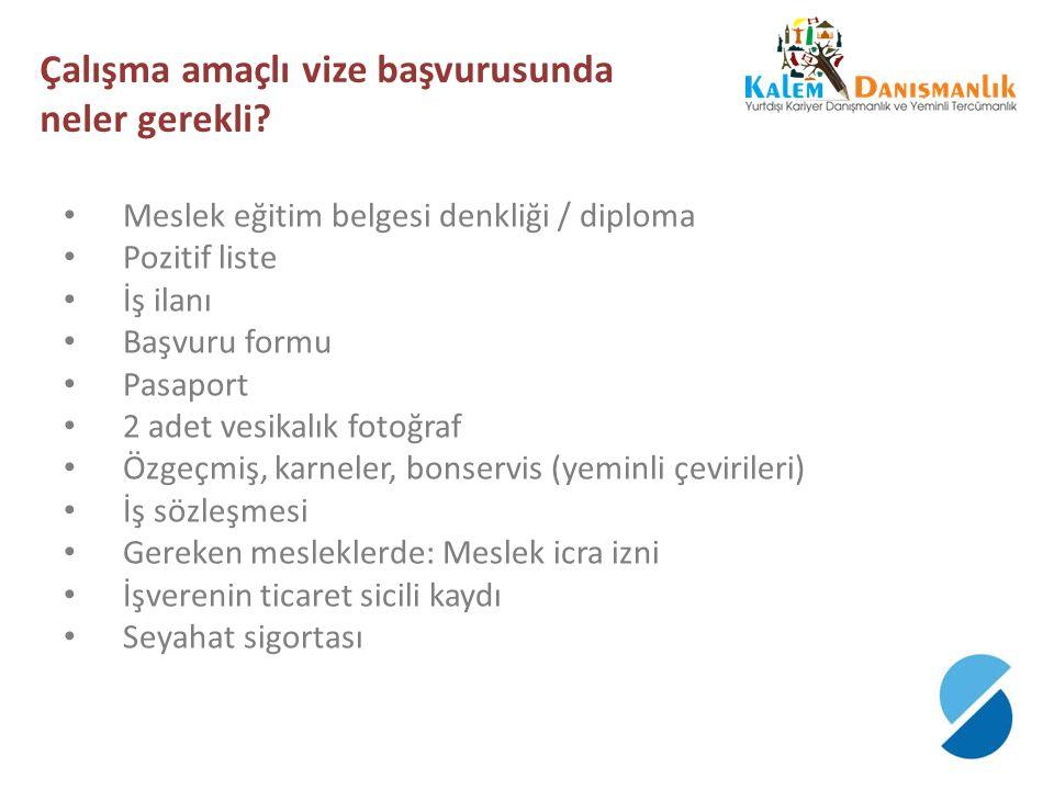 Çalışma amaçlı vize başvurusunda neler gerekli
