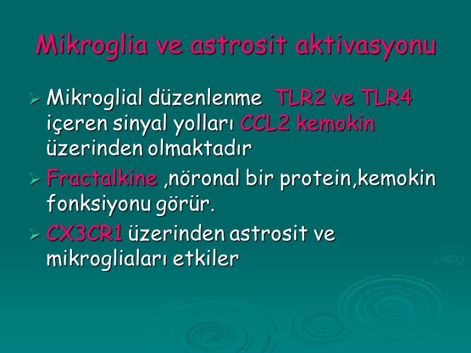 Mikroglia ve astrosit aktivasyonu