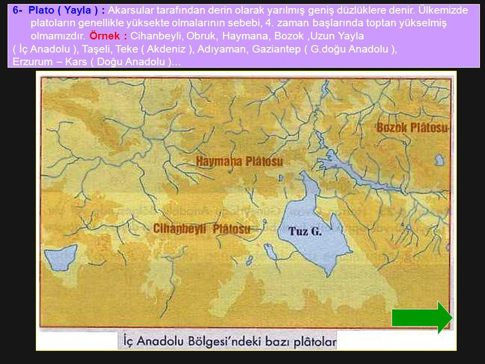 6- Plato ( Yayla ) : Akarsular tarafından derin olarak yarılmış geniş düzlüklere denir. Ülkemizde