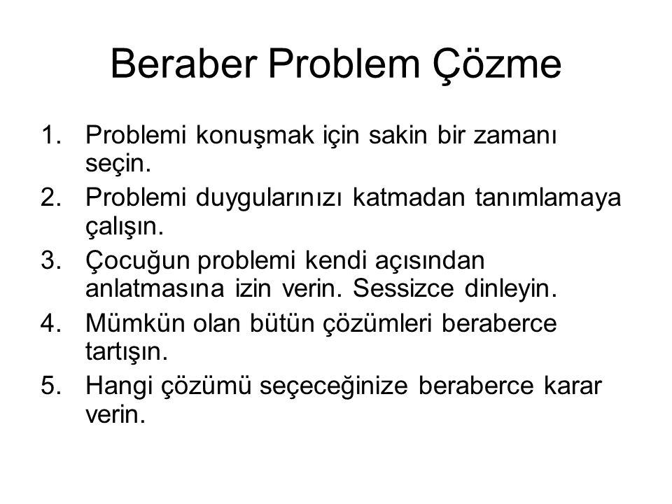 Beraber Problem Çözme Problemi konuşmak için sakin bir zamanı seçin.