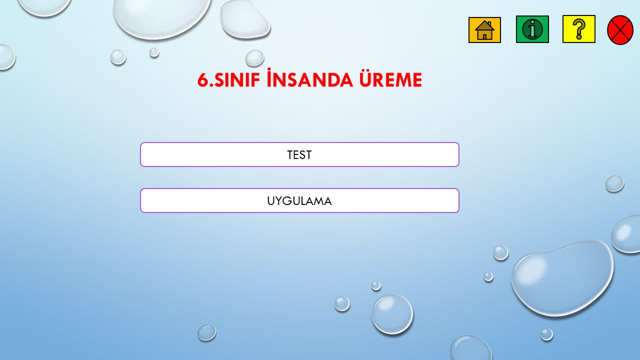 6.SINIF İNSANDA ÜREME TEST UYGULAMA