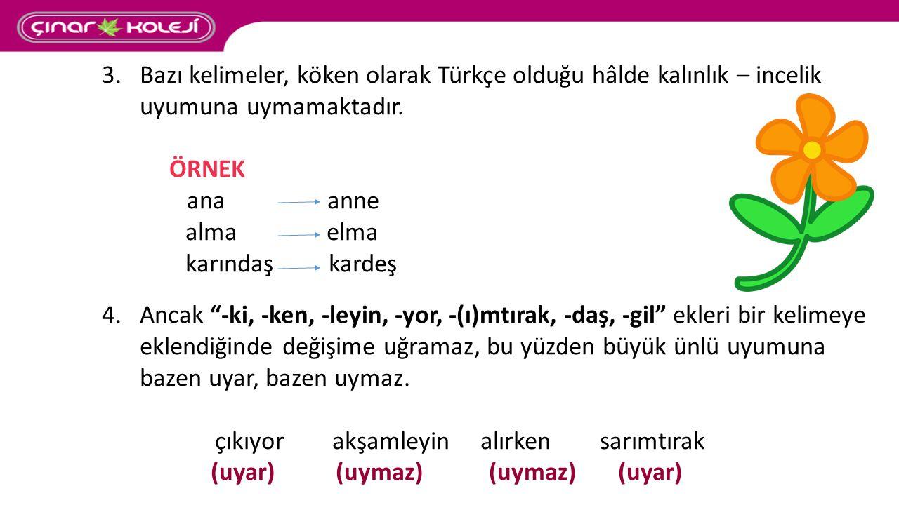 Bazı kelimeler, köken olarak Türkçe olduğu hâlde kalınlık – incelik