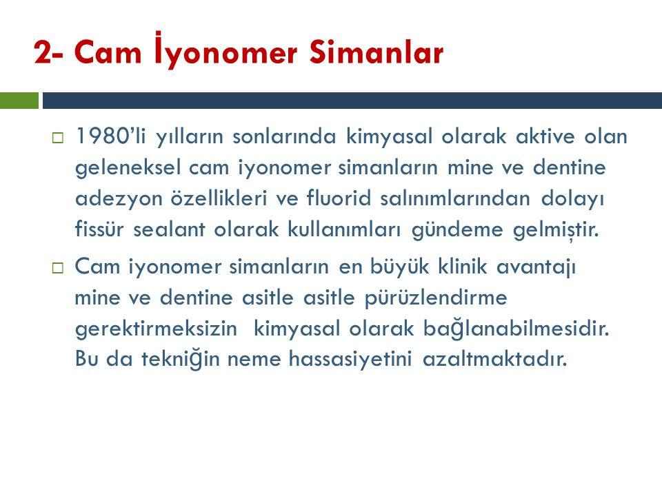 2- Cam İyonomer Simanlar