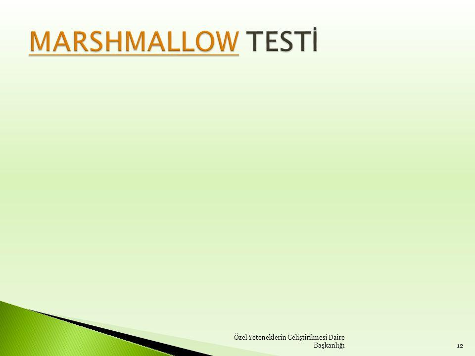 MARSHMALLOW TESTİ Özel Yeteneklerin Geliştirilmesi Daire Başkanlığı