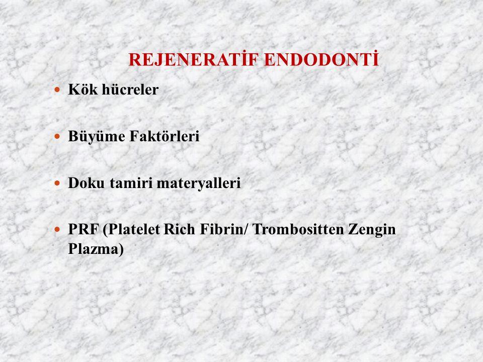 REJENERATİF ENDODONTİ