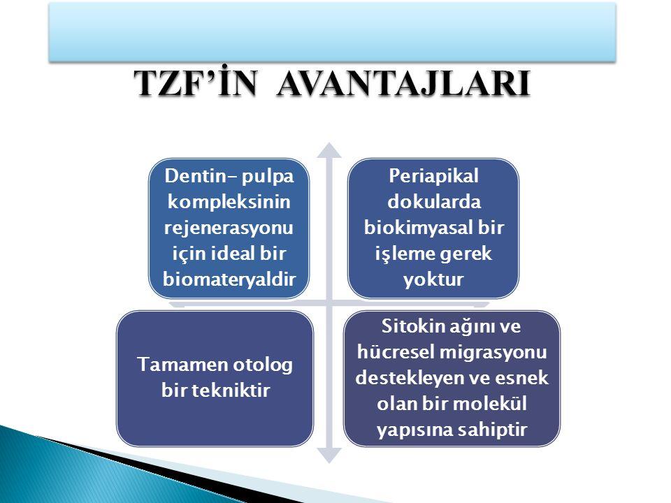 TZF'İN AVANTAJLARI Dentin- pulpa kompleksinin rejenerasyonu için ideal bir biomateryaldir. Periapikal dokularda biokimyasal bir işleme gerek yoktur.