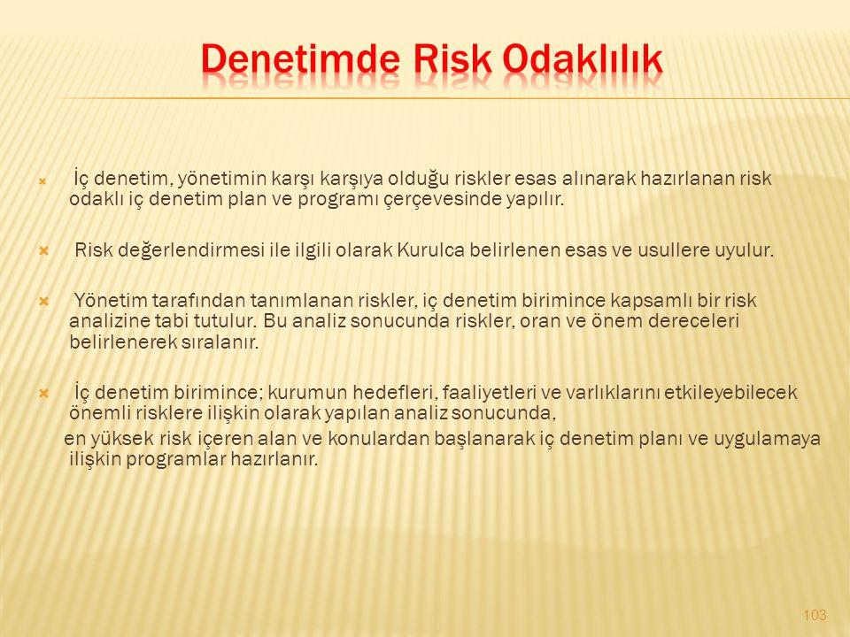 Denetimde Risk Odaklılık