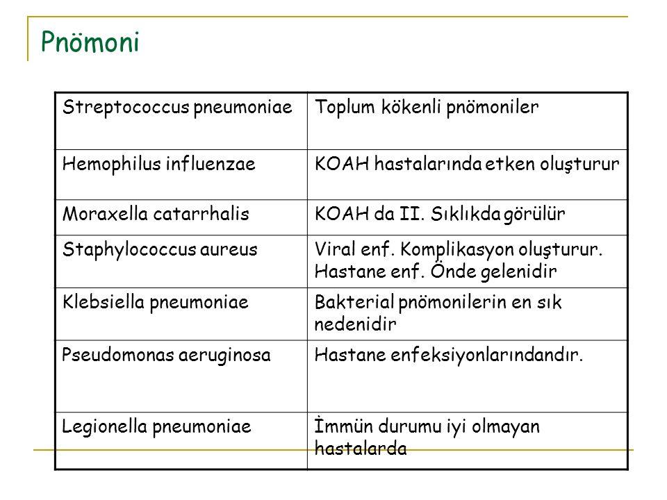 Pnömoni Streptococcus pneumoniae Toplum kökenli pnömoniler
