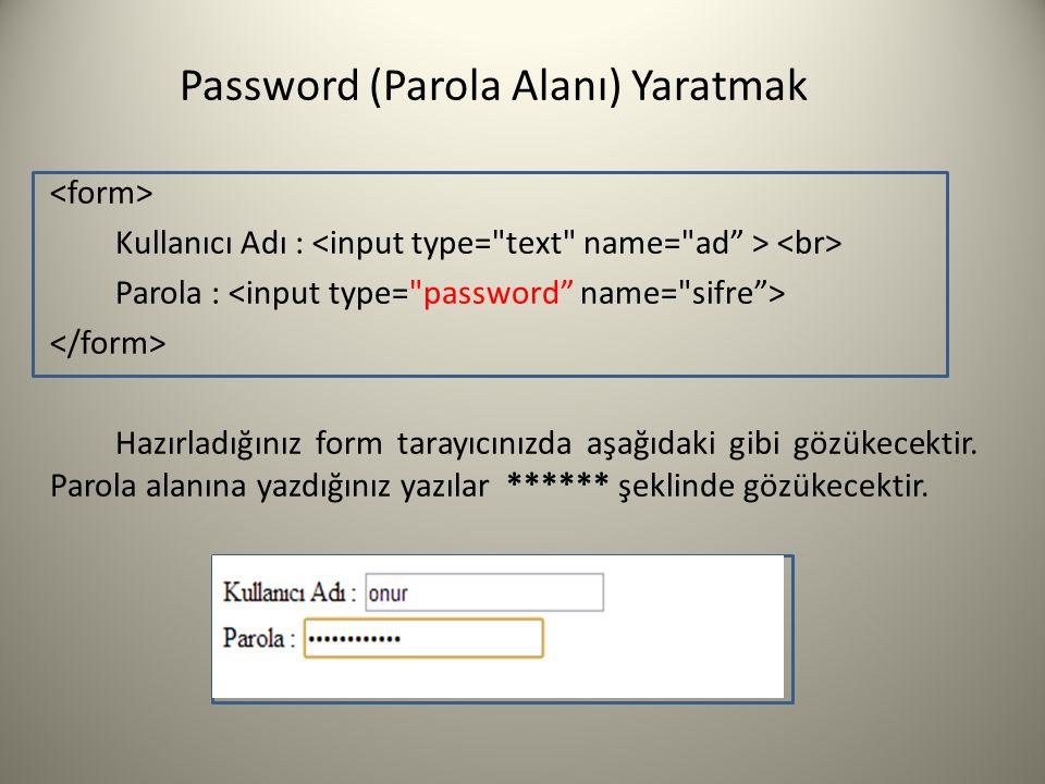 Password (Parola Alanı) Yaratmak