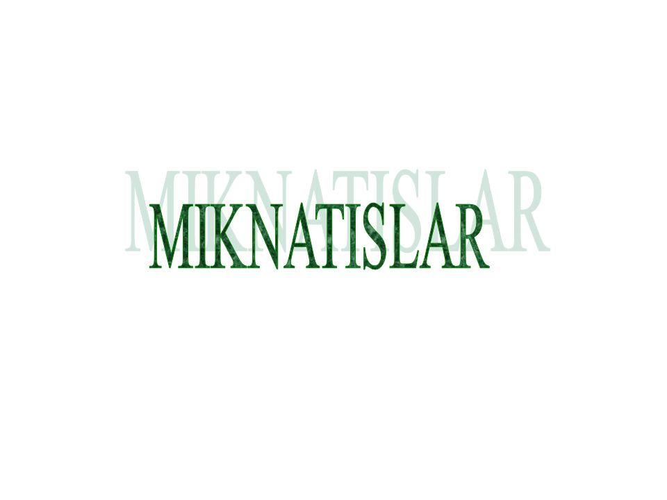 MIKNATISLAR