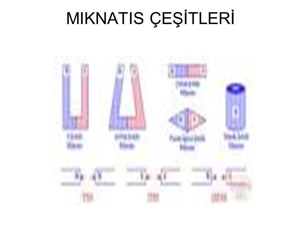 MIKNATIS ÇEŞİTLERİ