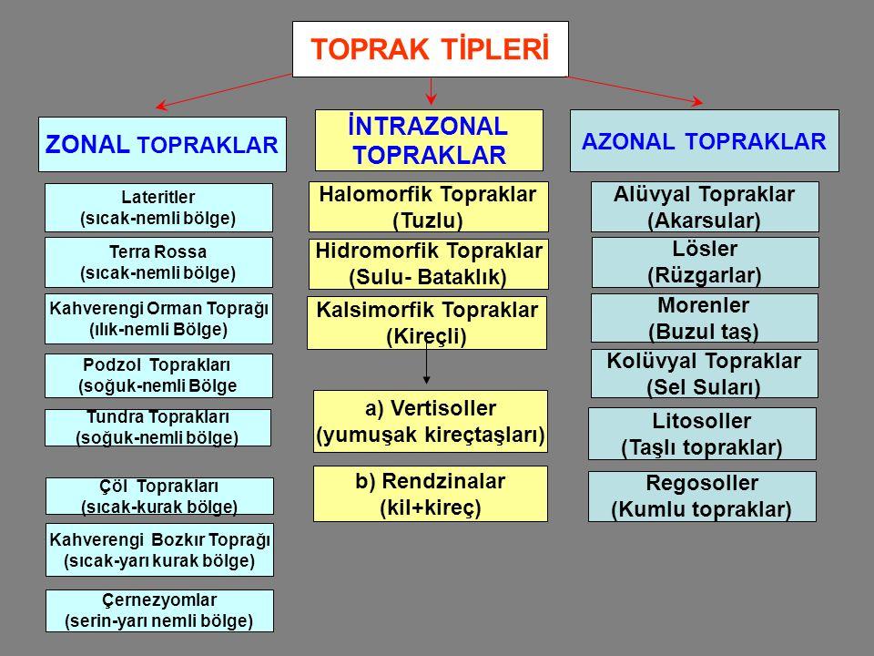 TOPRAK TİPLERİ İNTRAZONAL ZONAL TOPRAKLAR TOPRAKLAR AZONAL TOPRAKLAR