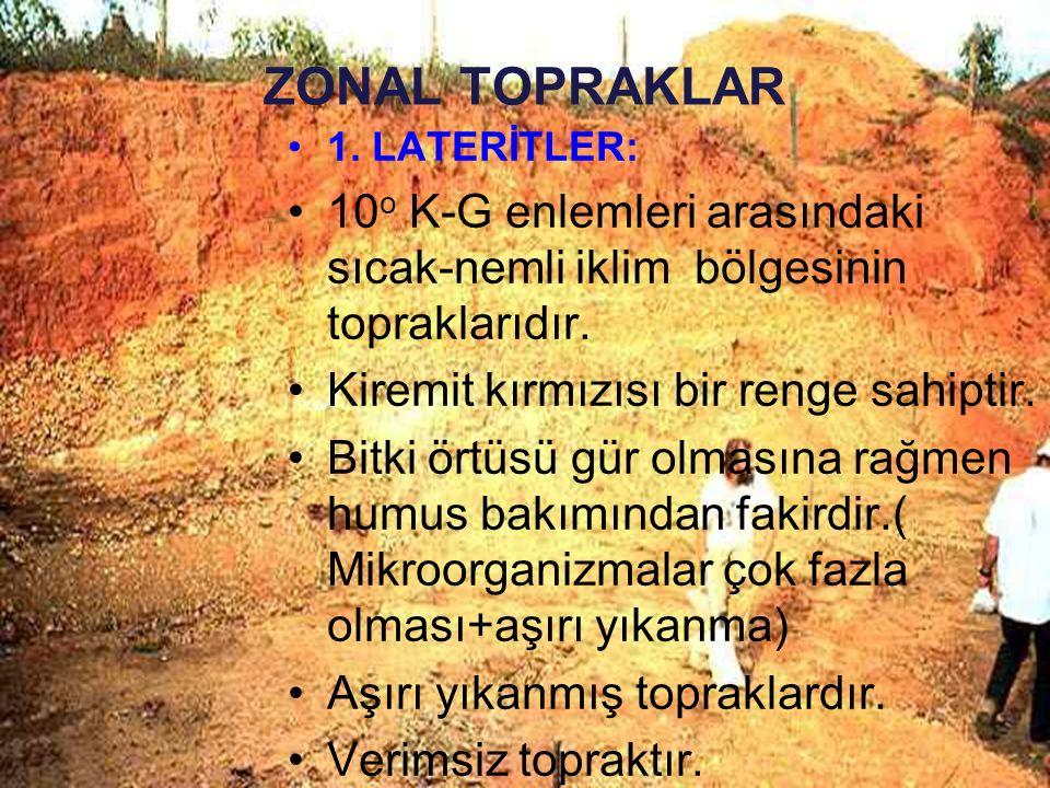 ZONAL TOPRAKLAR 1. LATERİTLER: 10o K-G enlemleri arasındaki sıcak-nemli iklim bölgesinin topraklarıdır.