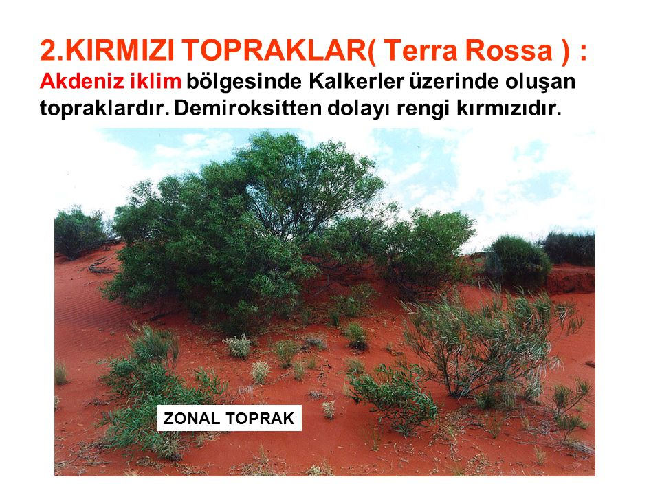 2.KIRMIZI TOPRAKLAR( Terra Rossa ) : Akdeniz iklim bölgesinde Kalkerler üzerinde oluşan topraklardır. Demiroksitten dolayı rengi kırmızıdır.