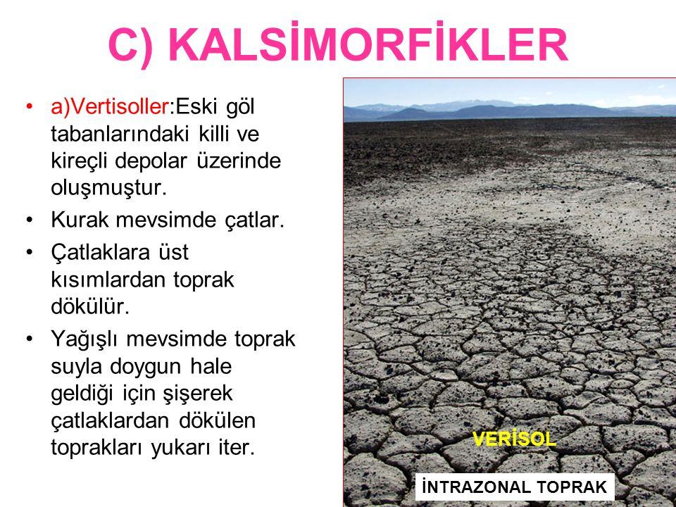 C) KALSİMORFİKLER a)Vertisoller:Eski göl tabanlarındaki killi ve kireçli depolar üzerinde oluşmuştur.