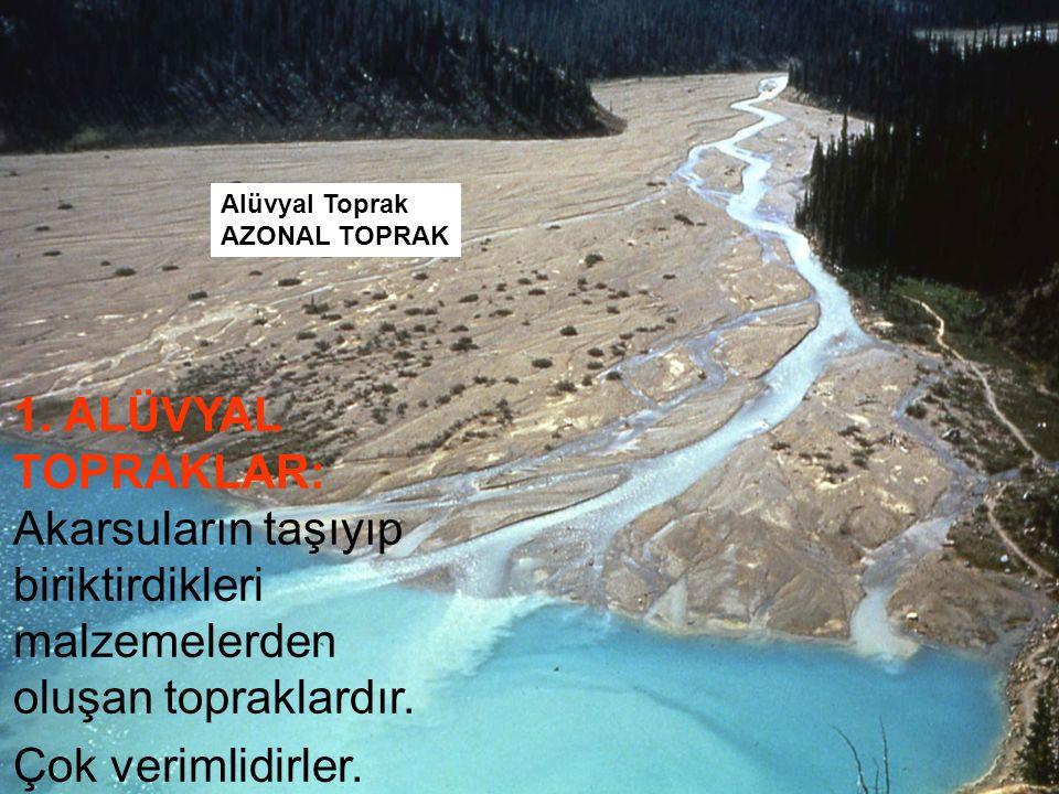 Alüvyal Toprak AZONAL TOPRAK. 1. ALÜVYAL TOPRAKLAR: Akarsuların taşıyıp biriktirdikleri malzemelerden oluşan topraklardır.