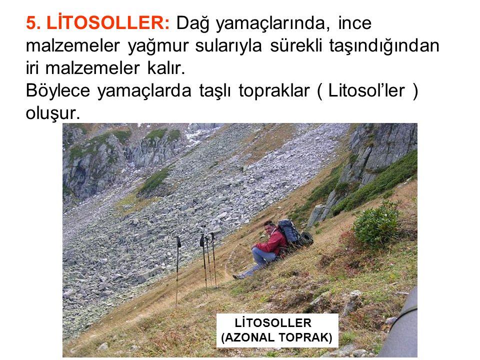 5. LİTOSOLLER: Dağ yamaçlarında, ince malzemeler yağmur sularıyla sürekli taşındığından iri malzemeler kalır. Böylece yamaçlarda taşlı topraklar ( Litosol'ler ) oluşur.