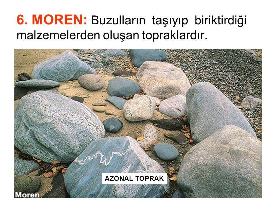 6. MOREN: Buzulların taşıyıp biriktirdiği malzemelerden oluşan topraklardır.