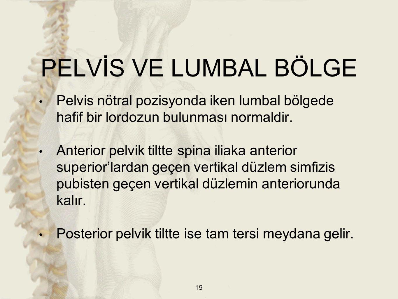 PELVİS VE LUMBAL BÖLGE Pelvis nötral pozisyonda iken lumbal bölgede hafif bir lordozun bulunması normaldir.
