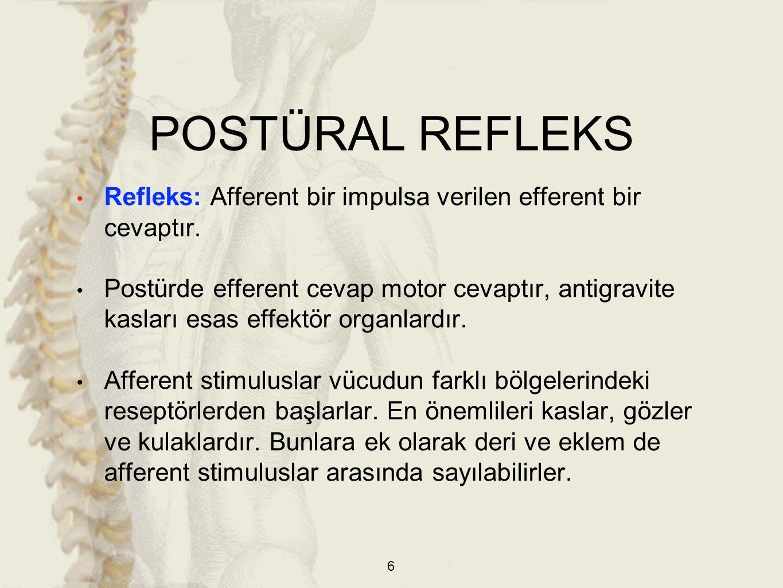 POSTÜRAL REFLEKS Refleks: Afferent bir impulsa verilen efferent bir cevaptır.