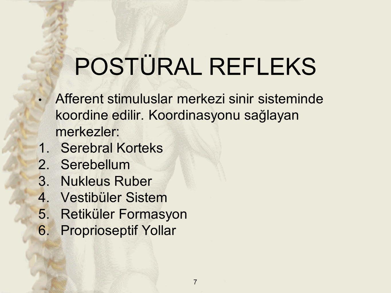 POSTÜRAL REFLEKS Afferent stimuluslar merkezi sinir sisteminde koordine edilir. Koordinasyonu sağlayan merkezler: