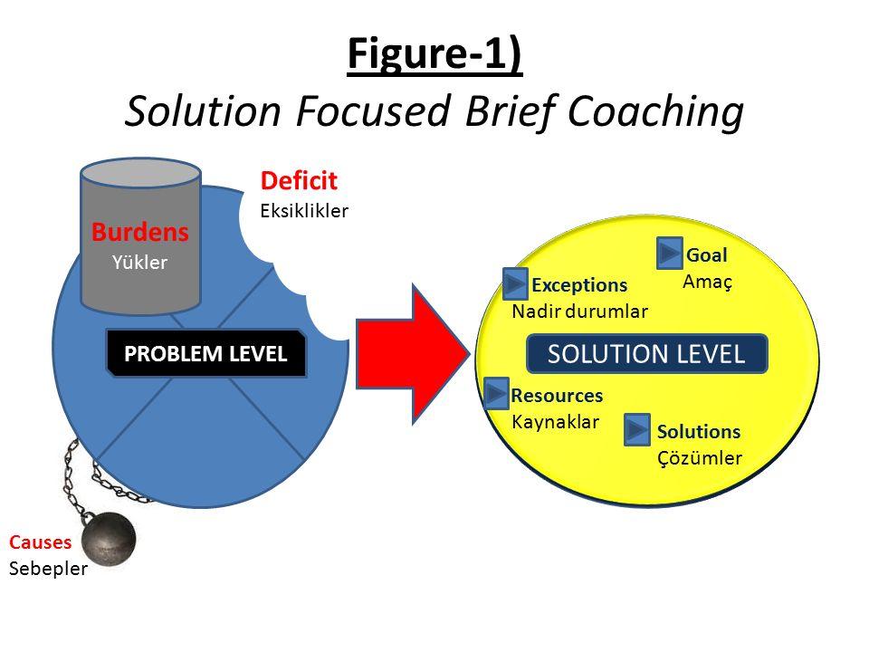 Figure-1) Solution Focused Brief Coaching