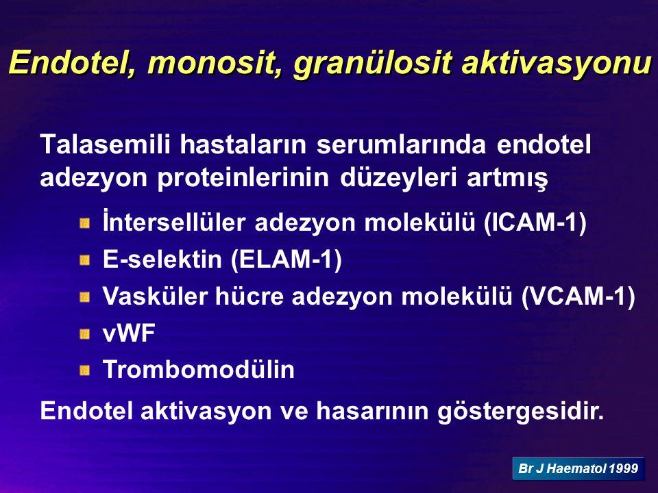 Endotel, monosit, granülosit aktivasyonu