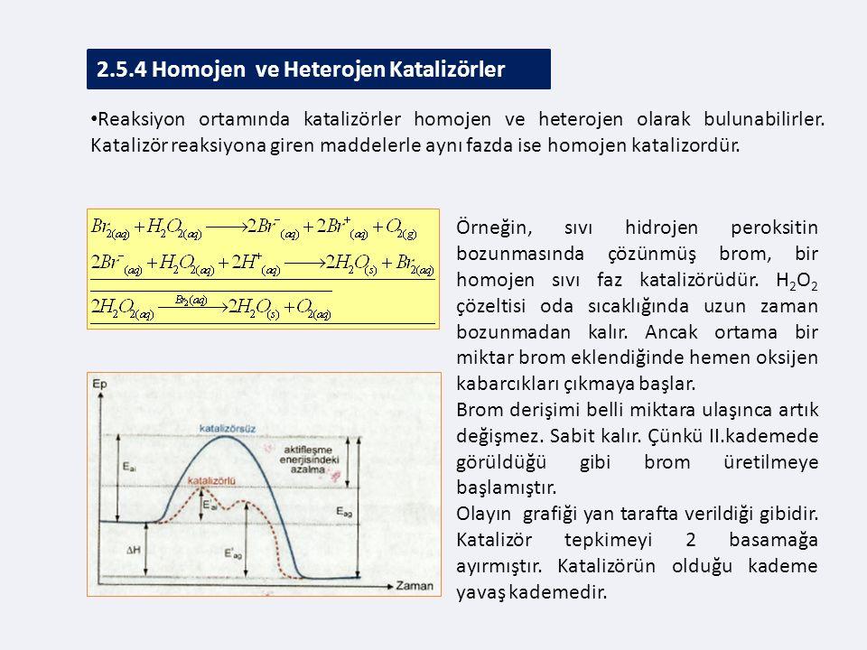 2.5.4 Homojen ve Heterojen Katalizörler
