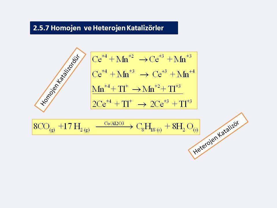2.5.7 Homojen ve Heterojen Katalizörler