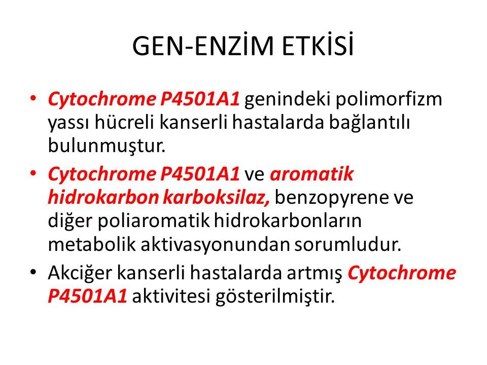 GEN-ENZİM ETKİSİ Cytochrome P4501A1 genindeki polimorfizm yassı hücreli kanserli hastalarda bağlantılı bulunmuştur.