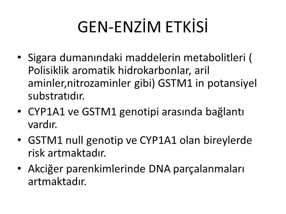 GEN-ENZİM ETKİSİ